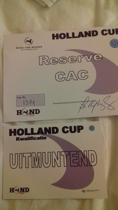 Amsterdam Holland Cup